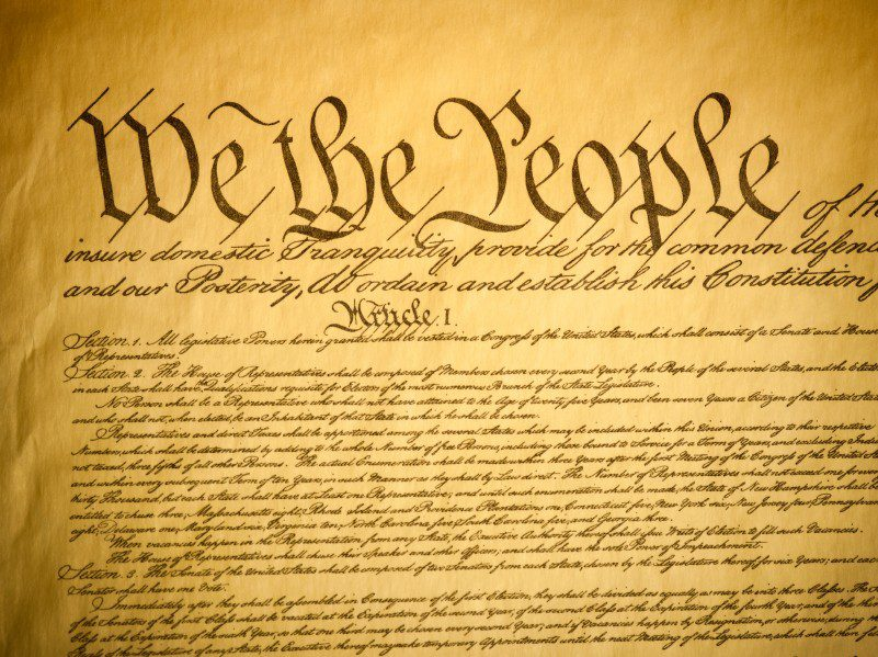 a description of the constitution on the view of people 14 in the view of washington and his  insertion in the present constitution of a declaration of the people's right to  nothing but a description and definition.