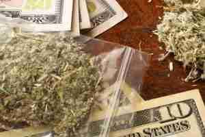 Bag of marijuana