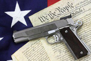 gun and the constitution